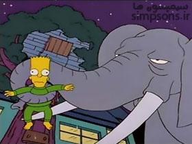 بارت یک فیل میگیرد
